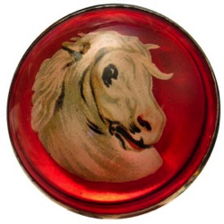 "1-1 Face designs - Horse - Domed Glass (1-1/4"")"