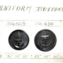 Examples of Division II British Uniform Buttons (See how shank is molded into horn body)